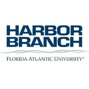 Harbor branch logo