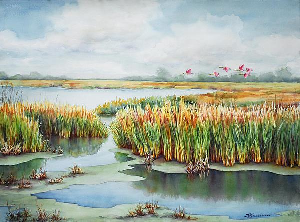 spoonbill-marsh-sue-zimmermann1