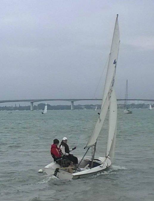 Sarasota on the water-3