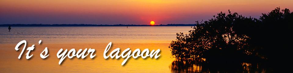 It's your lagoon