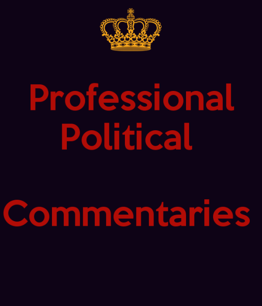 professional-political-commentaries