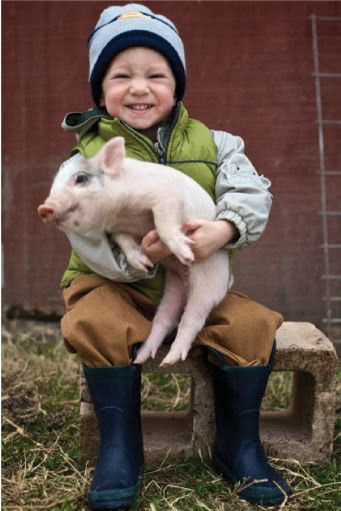 Little boy with pig