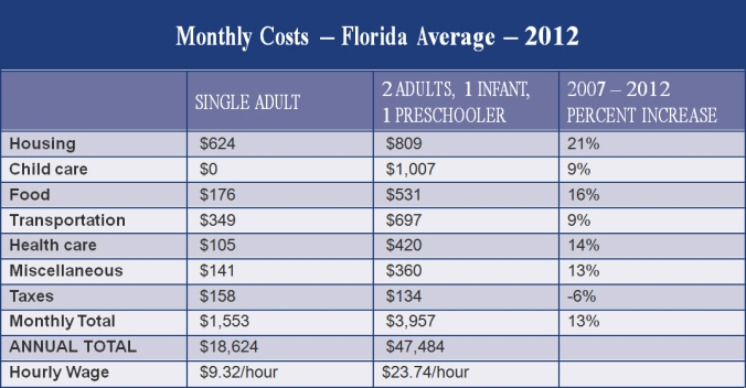 Monthly costs other