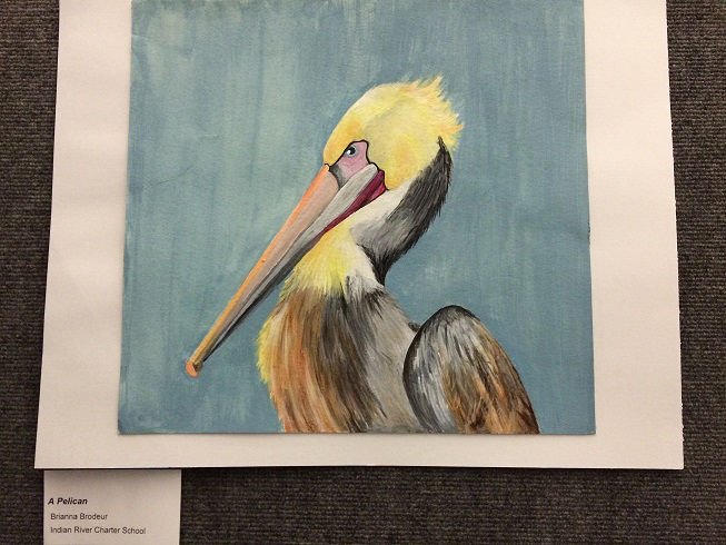 pelican1stplacewinner-2