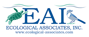 EAI.banner.logo