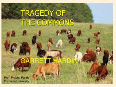 tragedy-of-the-commons-1-638