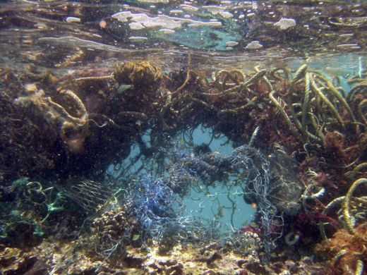 Plastic Garbage Patch