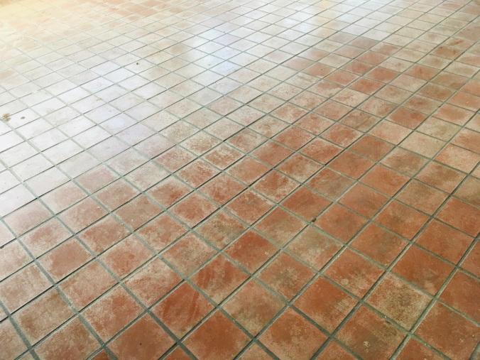 Tile in Main
